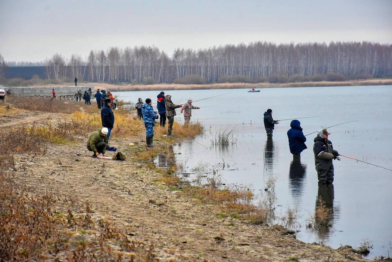 Рыбалка в липецке и области: особенности, рекомендации и отзывы