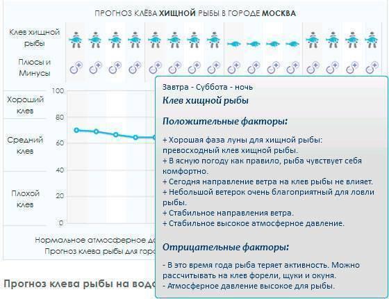 Рыболовный прогноз клёва, воздействия на клёв рыбы погоды, атмосферного давления, геомагнитных бурь и фаз луны