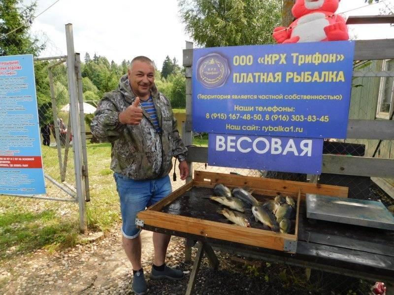 12 лучших рыболовных мест алтайского края. бесплатные водоёмы