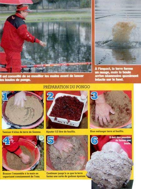Прикормка для карпа своими руками на кормушки: советы и рецепты