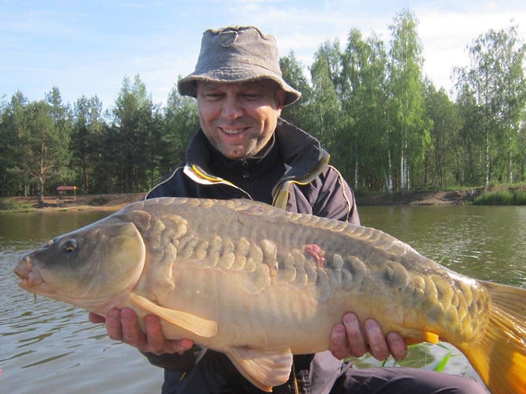 """Рыбалка в петряихе (в """"фишке», на рузском и озернинском водохранилище), какая рыба водится"""