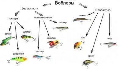 Топ-9 уловистых «угощений» для рыбы: насадки, наживки, прикорм – рыба никогда не отказывается