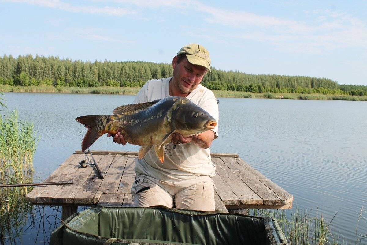 Все о рыбалке в камышине волгоградской области