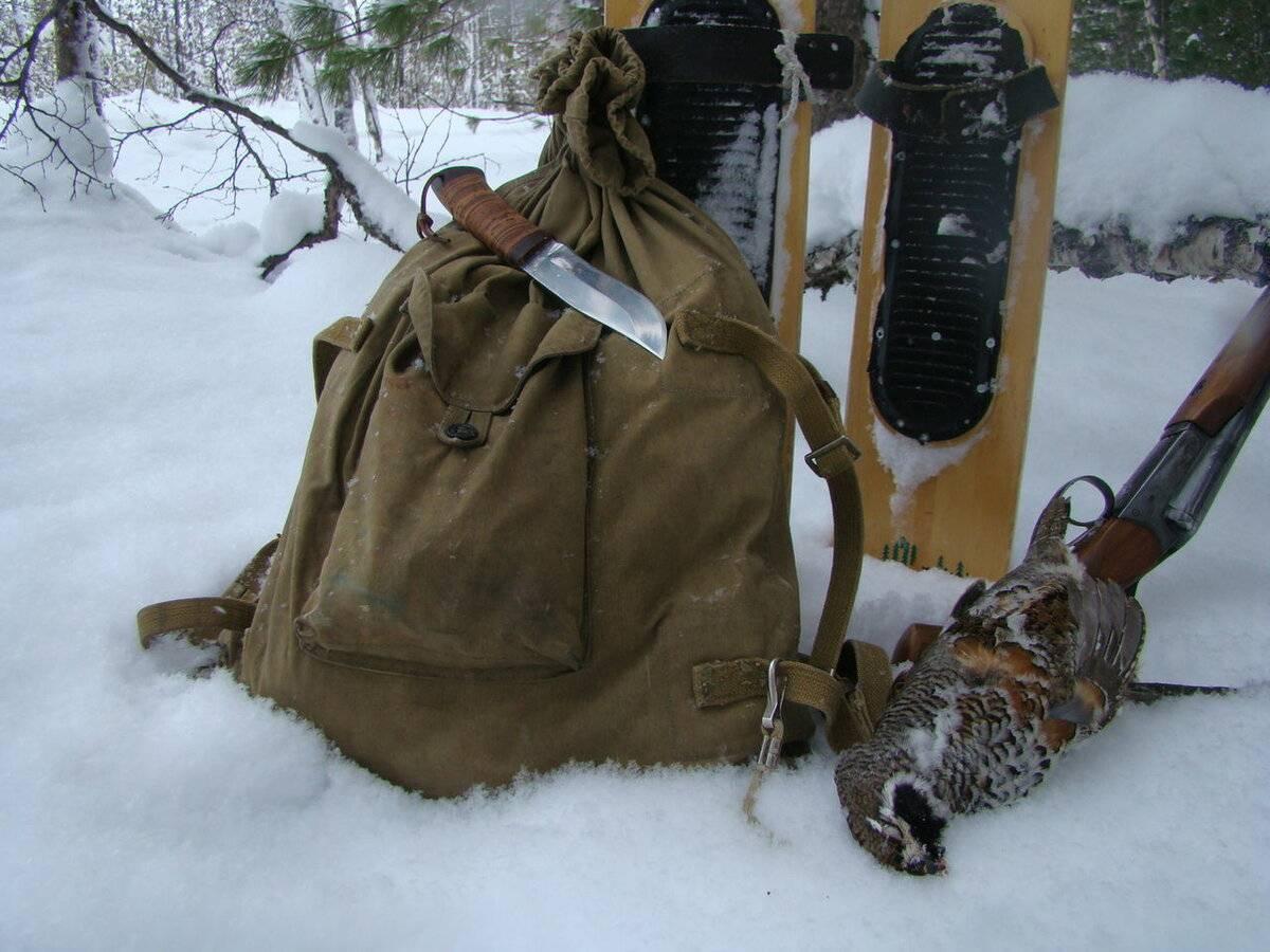 Виды охоты: описание, особенности и интересные факты :: businessman.ru