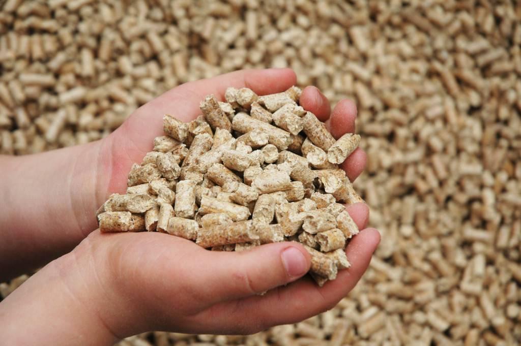 Сырье для пеллет: виды сырья, микс-пеллеты, агропеллеты, перспективы