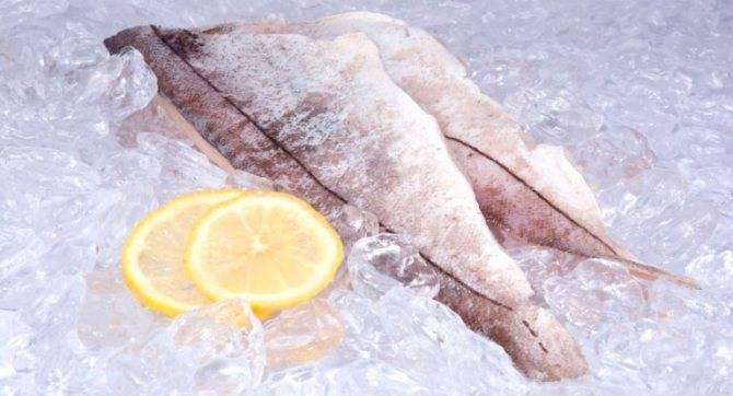 Рыба пикша: что за рыба, чем полезна, как готовить? 6 рецептов приготовления в духовке и на сковороде - rus-womens