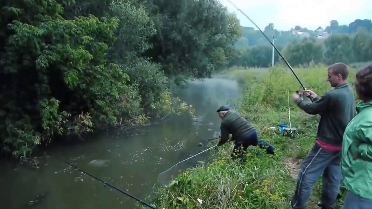 Ловля карпа: как найти и как поймать крупную рыбу
