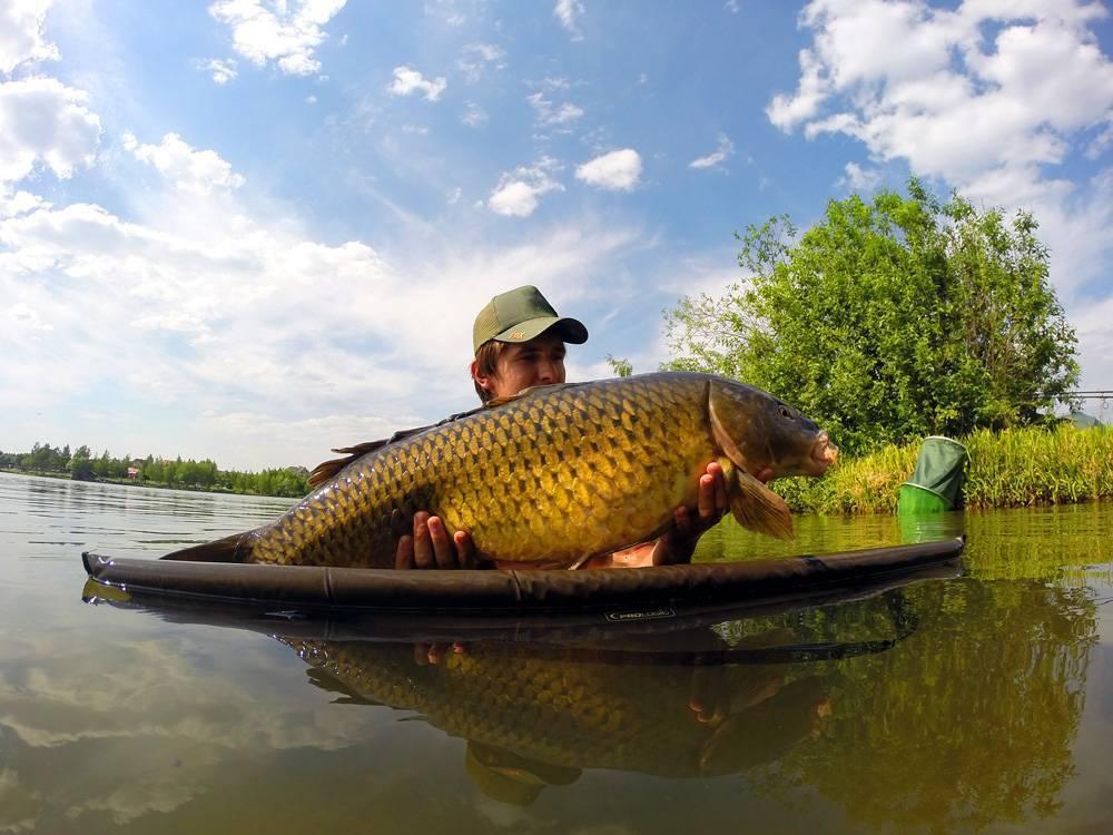 Рыбалка в Республике Северная Осетия – Алания: лучшие места на карте