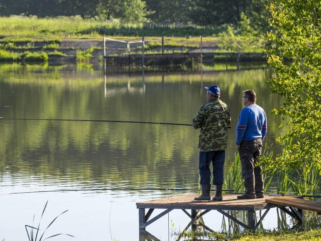 Рыбалка в волгоградской области: лучшие места на карте топ-10