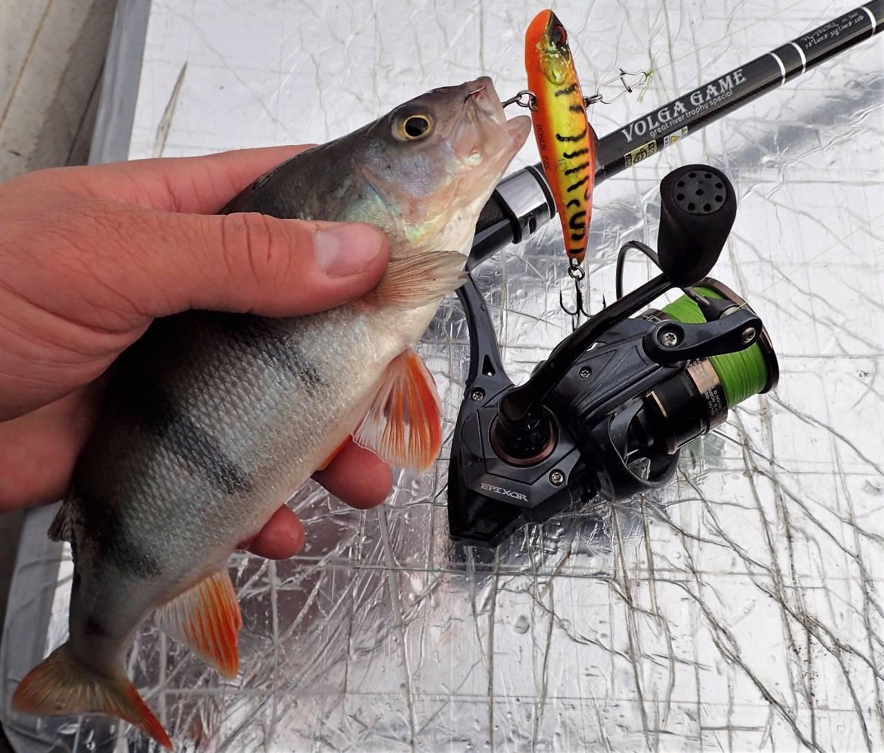 Ратлины для зимней рыбалки