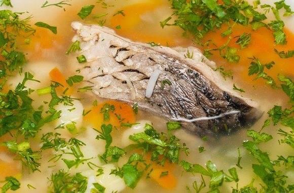Уха из сазана по простому пошаговому рецепту с фото