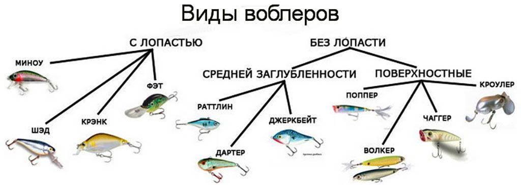 Тактика и техники рыбалки на воблеры. как правильно использовать эту приманку?