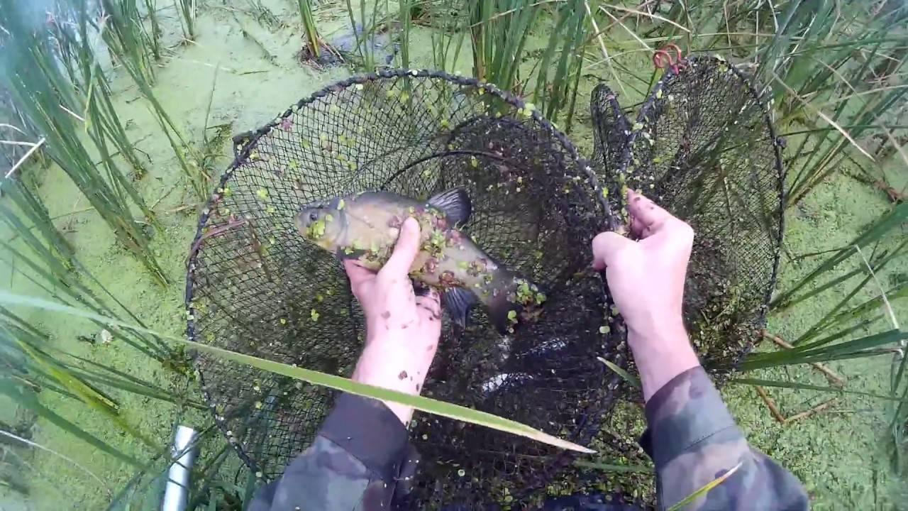 Как сделать морду для ловли рыбы своими руками?