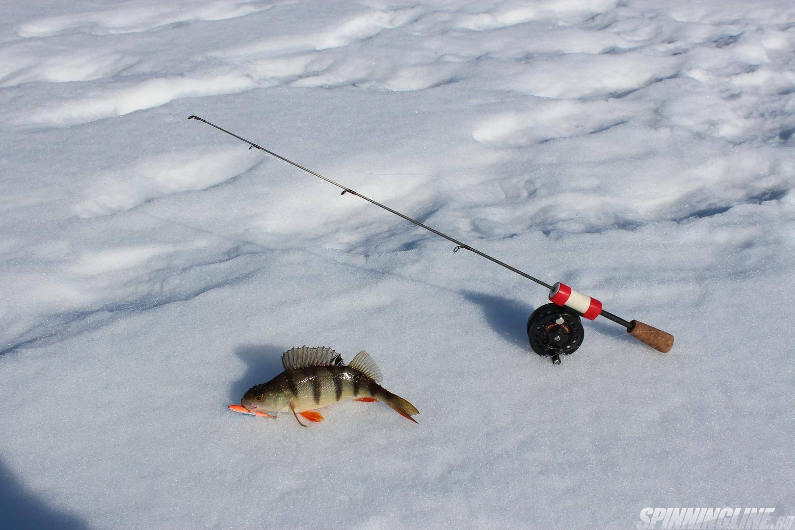Самые уловистые снасти для зимней рыбалки