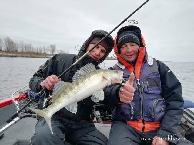 Рыбалка в серпуховском районе: рыбалка на оке в серпухове, карпов пруд и озеро лютце, павленское и другие места
