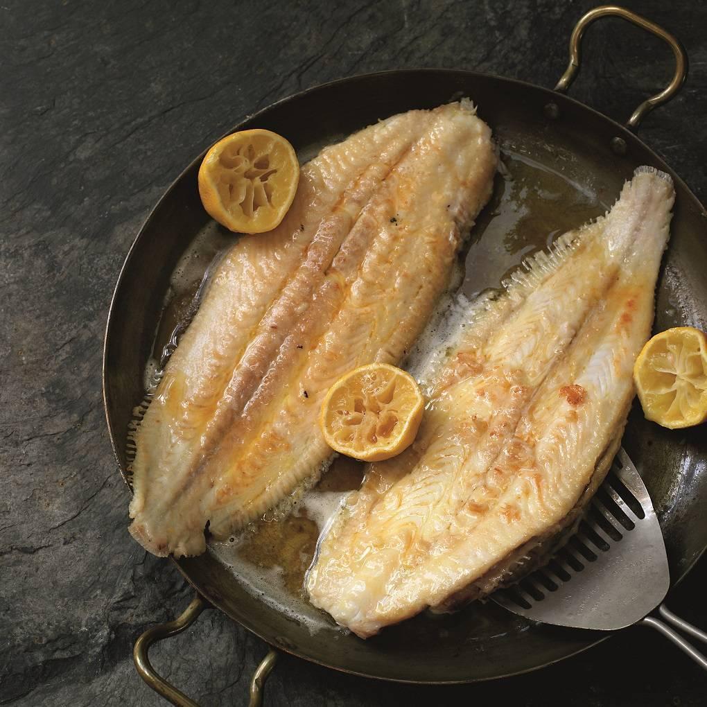Морской язык — что это за рыба, как выглядит, рецепты, польза и вред