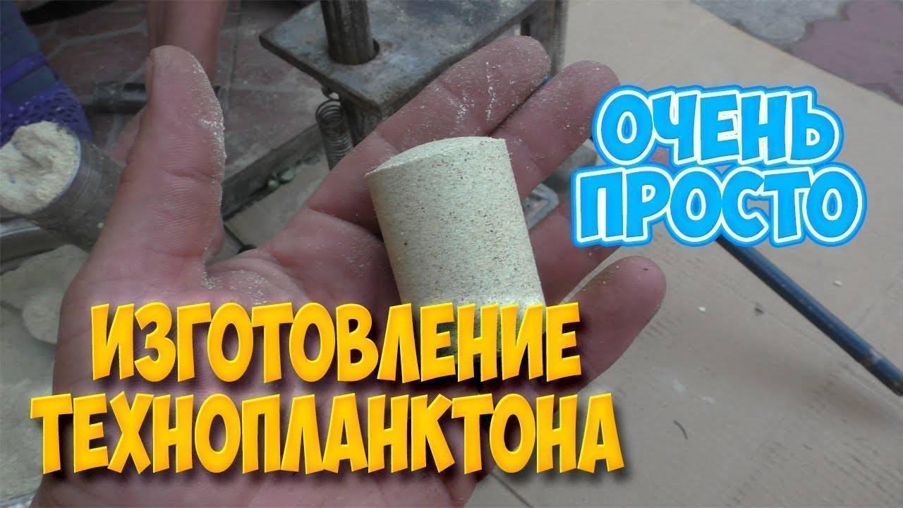 Рецепты технопланктона для пресса для ловли толстолобика