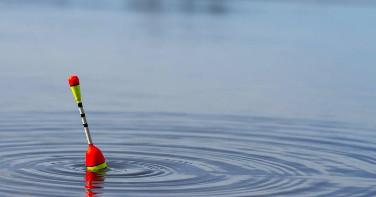 Ловим хищника на поплавок с живцом