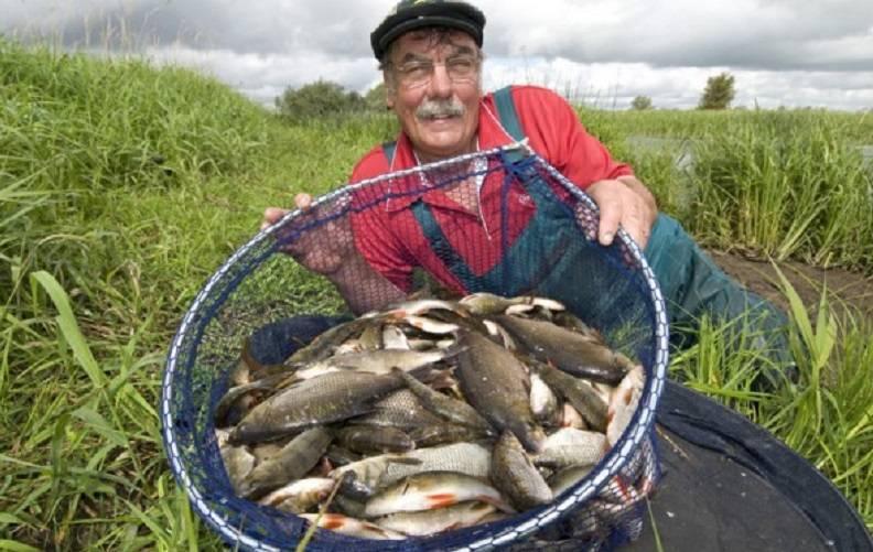 Секрет бывалых деревенских рыбаков, как удачно поймать много рыбы