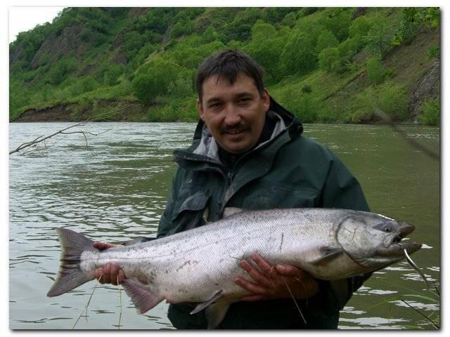 Рыба «Сима» фото и описание