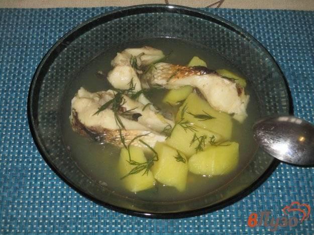Как приготовить сазана — рецепты приготовления рыбы в духовке целиком, ухи, котлет и шашлыка на решетке