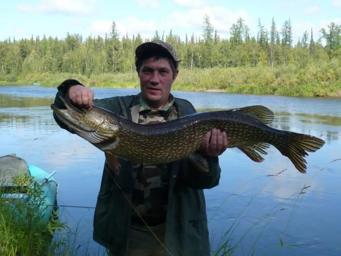 Куда поехать на рыбалку в красноярском крае