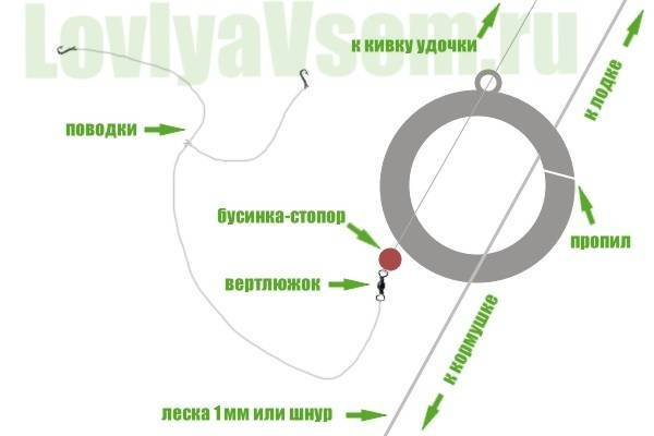 Ловля леща на кольцо: (монтаж кольцовки и техника ловли)