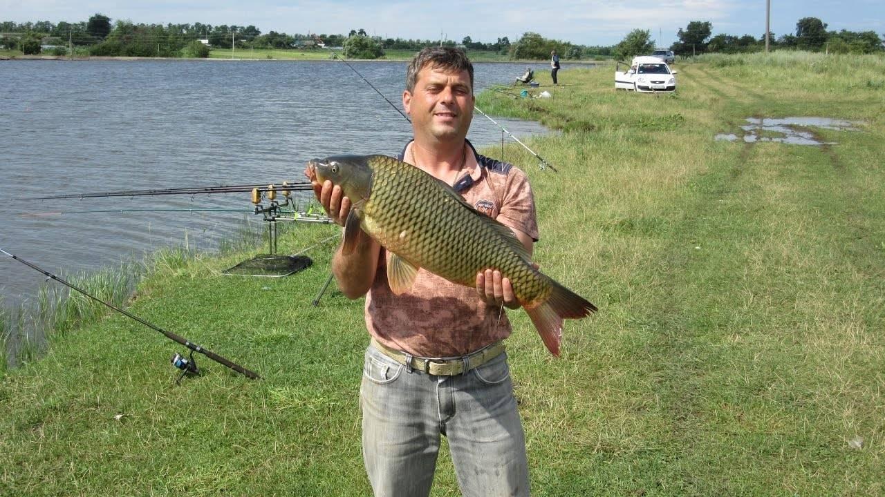 Все о рыбалке в краснодаре - где водится рыба, платные и бесплатные места для лова