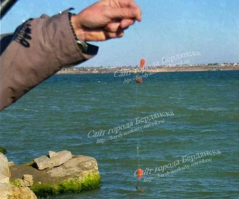 Рыбалка в крыму: морская и озерная. обзор лучших мест