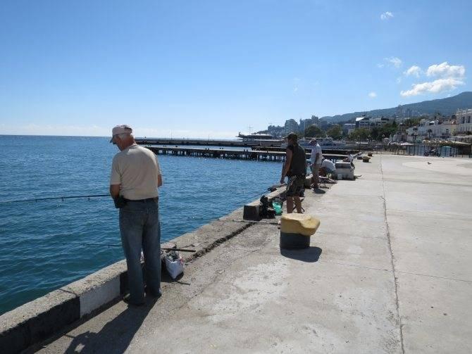Рыбалка в крыму (морская и на озерах), где можно ловить с берега в январе