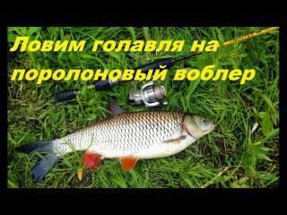 ✅ рыбалка на куриную печень - https://xn----7sbeepoxlghbuicp1mg.xn--p1ai/