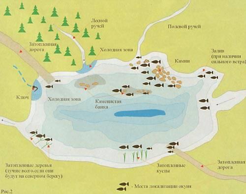 Все о ловле окуня: ловля окуня осенью, зимой, весной и летом, где ловить окуня, насадки и наживки для ловли окуня, ловля окуня на спиннинг