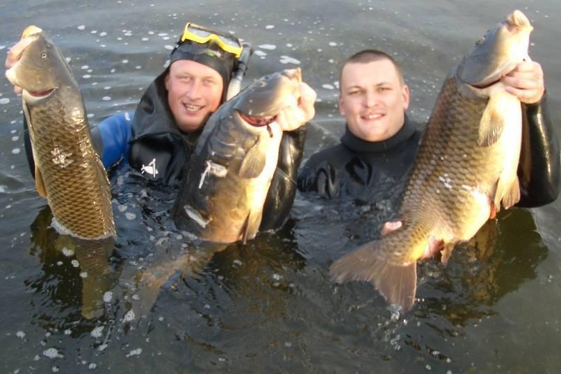 Летняя рыбалка на кубани: 10 советов новичкам | новости краснодара и юга.