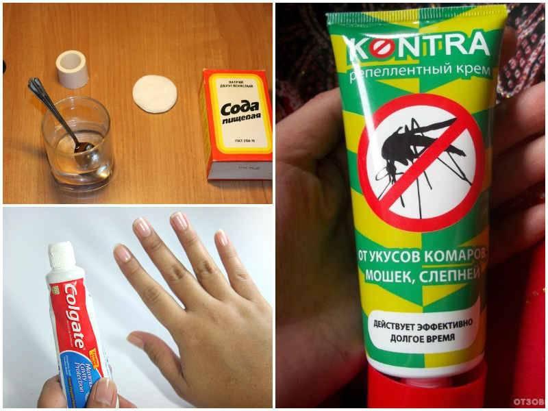 Избавляемся от комаров народными средствами, как защитить дом и себя