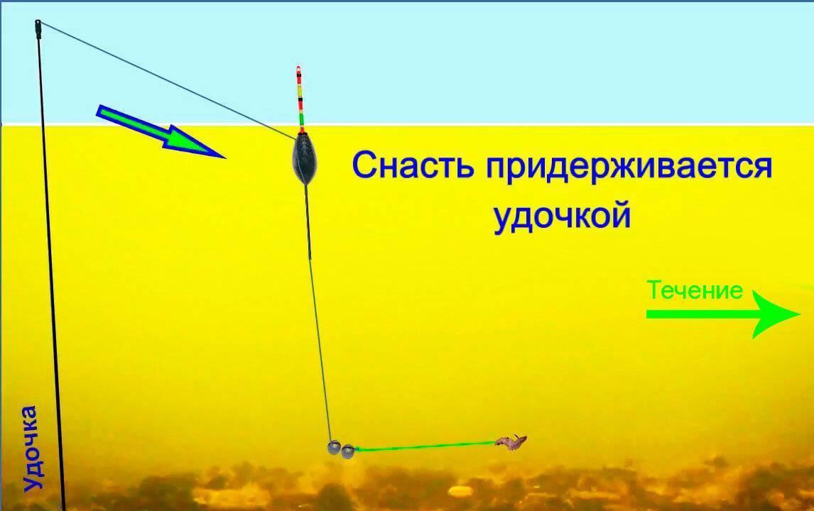 Как ловить чехонь на спиннинг?