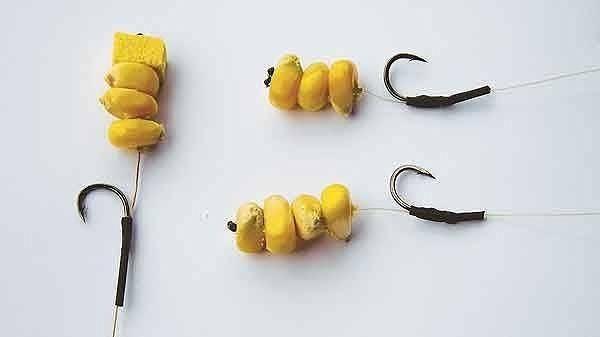Как варить кукурузу для рыбалки для карпа и другой рыбы: что нужно сделать, чтобы правильно приготовить продукт для хорошего клева?