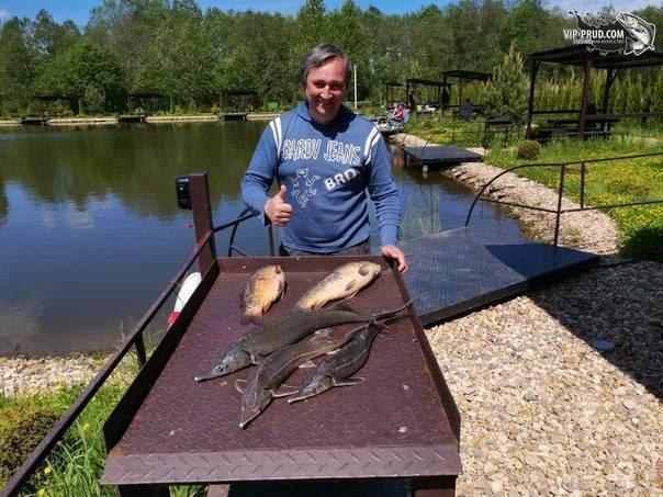 Рыбалка озеро хохлово в костромской области -по областям -рыбалка в костромской области -рыбалка