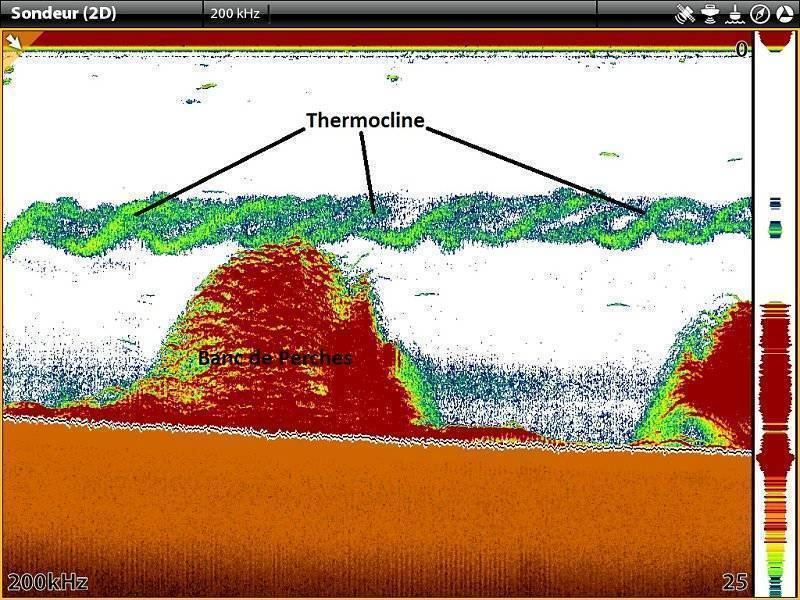 Термоклин: что это такое, обнаружение эхолотом во время рыбалки, влияние на рыбу