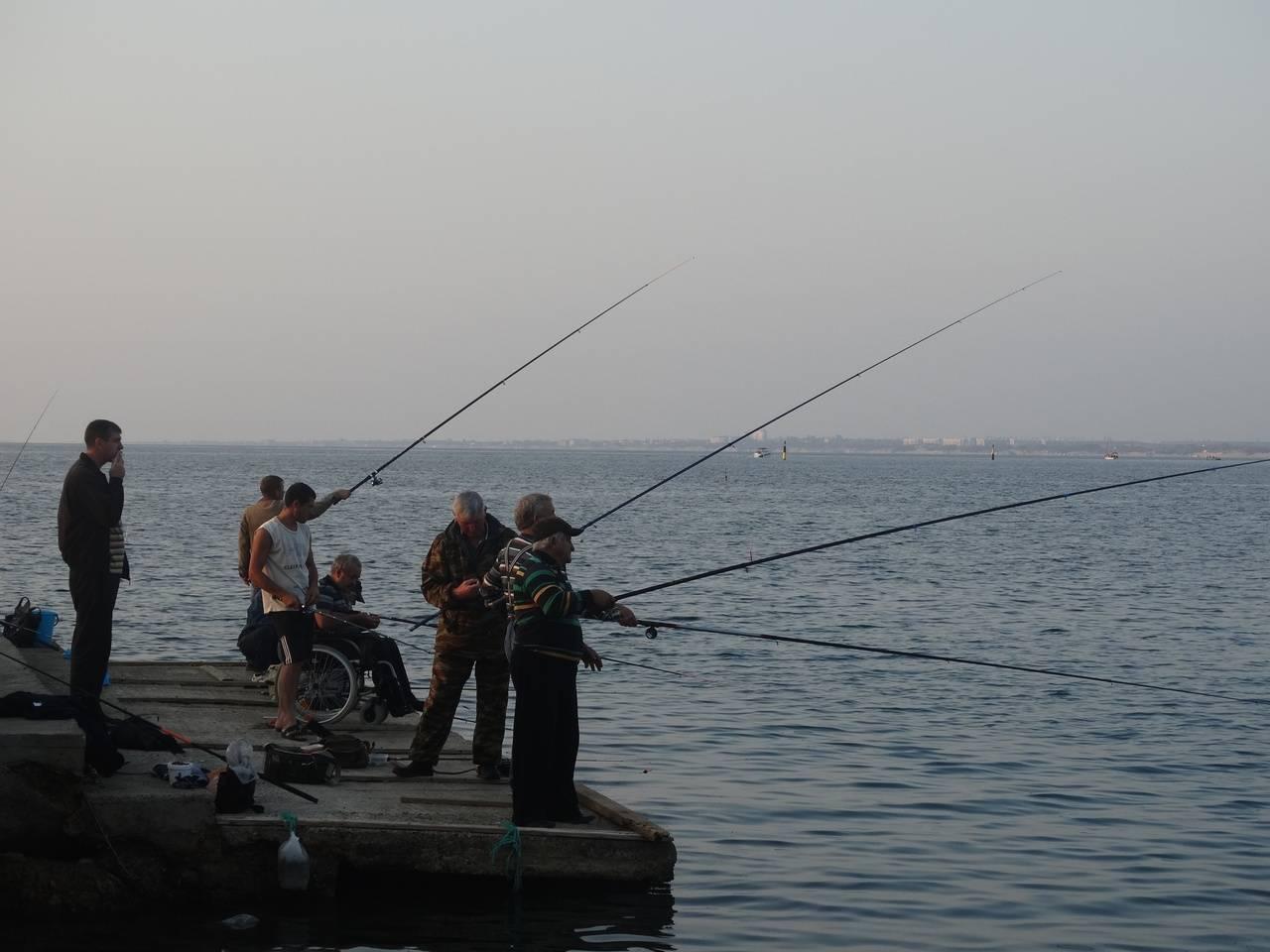 Рыбалка на черном море с берега: какая рыба водится, на что лучше ловить