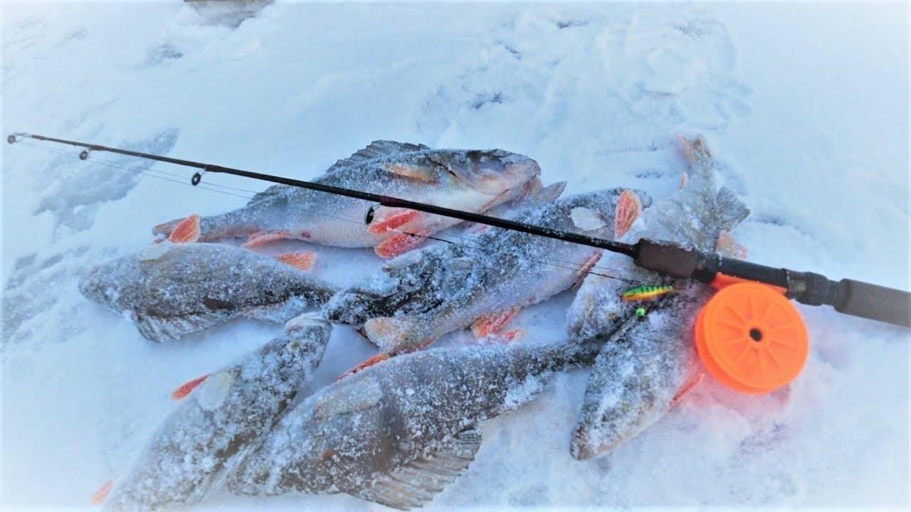 Ловля судака зимой на балансир (2 видео) | секреты ловли