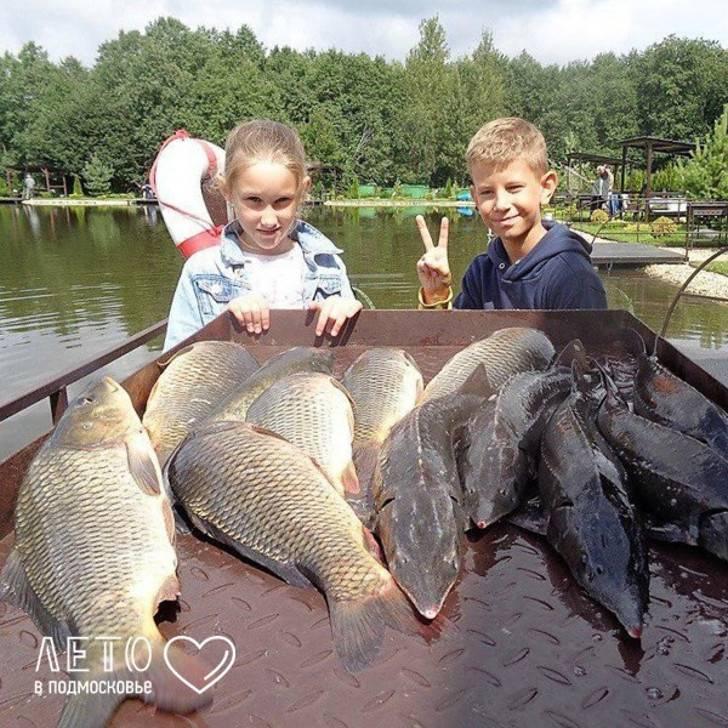 Кфх прудцы — обзор платной рыбалки, отзывы