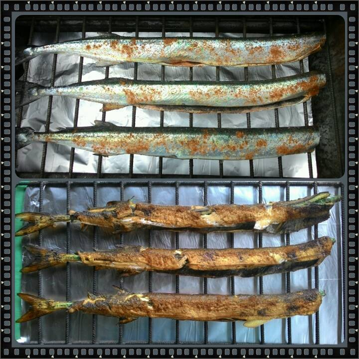 Рыба красноглазка: описание, фото и калорийность