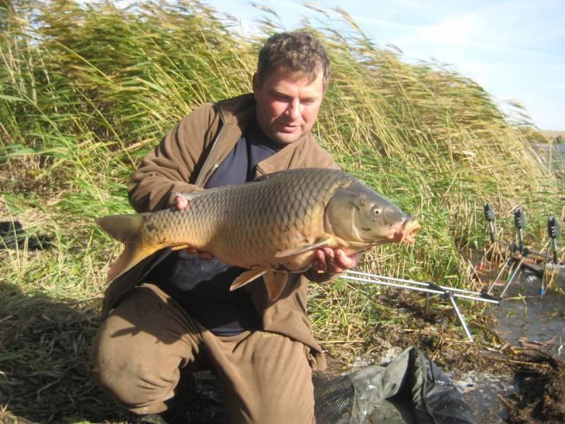 Рыбалка в самарской области на реках, озерах, платных водоемах