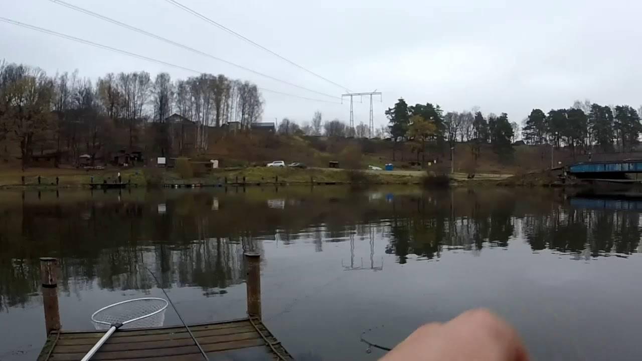 Пруд и зона отдыха на речке синичка