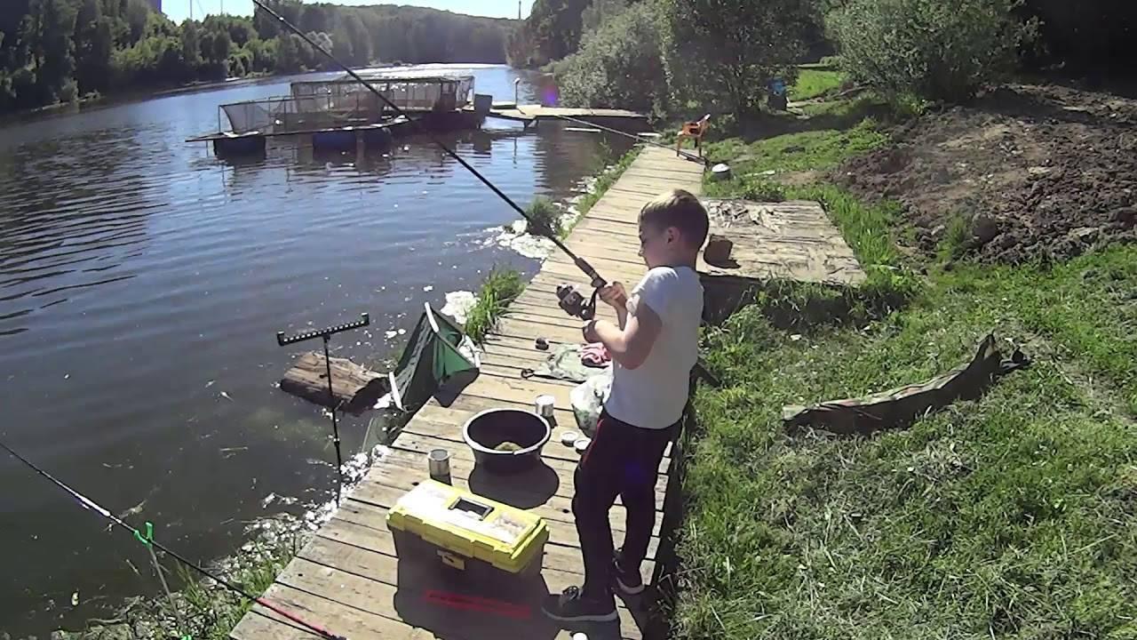 Рыбалка в красногорске 2020, отзывы про платную рыбалку в красногорске на плотине в биг карп, цены