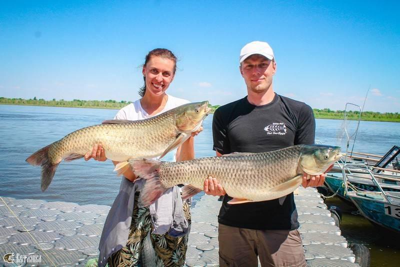 Астраханская рыбалка в разное время года - особенности и советы