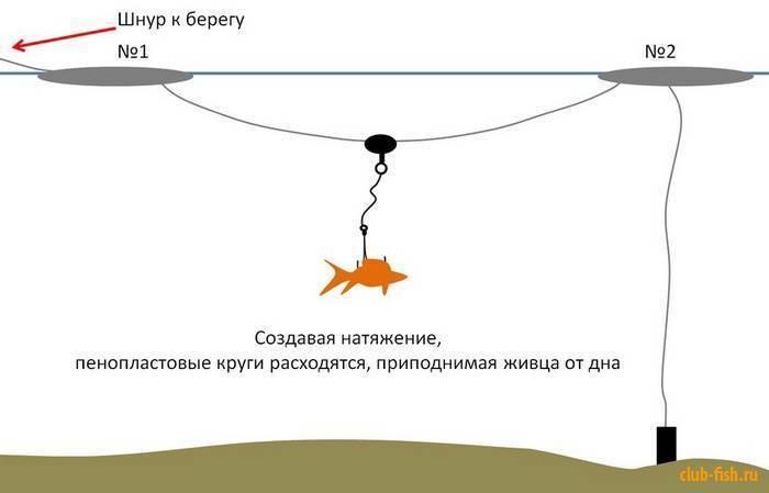 Ловля живца: как поймать, сохранить и насадить на крючок