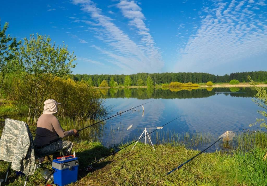 Рыбалка в Республике Алтай: лучшие места на карте ТОП-10