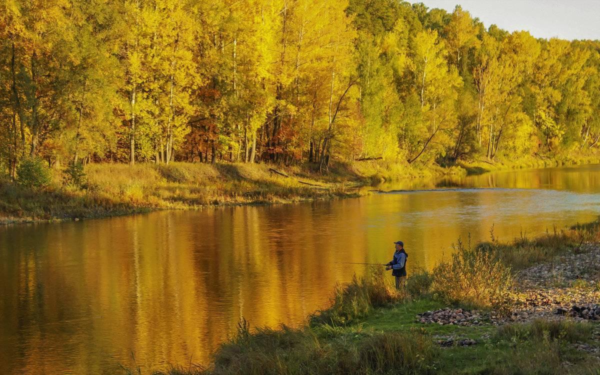 Рыбалка. информационный портал «landfish»