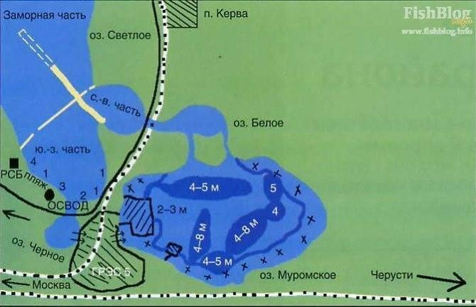 Озеро белое в шатурском районе: санаторий, цены 2020, сайт, погода, отзывы – туристер.ру